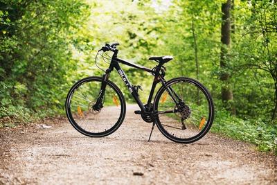 rower na drodze w lesie
